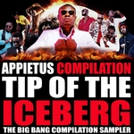 Tip Of The Iceberg (The Big Bang Compilation Sampler)