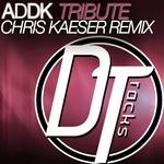 Tribute (Chris Kaeser Remix)