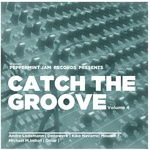 Catch The Groove Vol 4