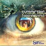 Symmetric Consciousness