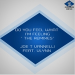 Do You Feel What I'm Feeling (The Remixes)