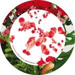 Hotel Novalis The Remixes