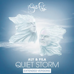 Quiet Storm (Extended Versions)