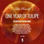 One Year Of Tulipe