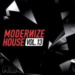 Modernize House Vol 13