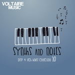 Synths & Notes Vol 10