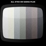 All Eyes On Sasha Plus