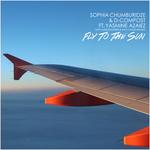 Fly To The Sun (remixes)