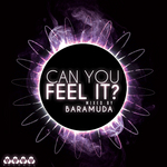 Can You Feel It? Mixed By Baramuda