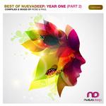 Best Of Nuevadeep: Year 1 Part 2
