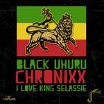 I Love King Selassie (Remix)