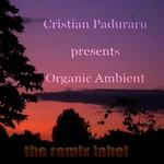 Organic Ambient - Progressive Chillout Music Album For Christmas Season