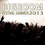Bigroom Festival Summer 2013