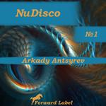 NuDisco N 1