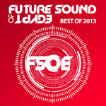 Future Sound Of Egypt - Best Of 2013
