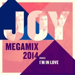 Megamix 2014