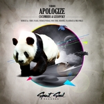 Apologize (remixes)
