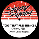 Todd Terry presents: Can You Feel It