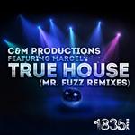 True House (Mr Fuzz Remixes)