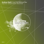 I Can't Fly Without You (remixes)