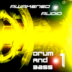Drum & Bass 1 (Sample Pack WAV)