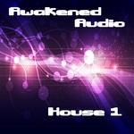 House 1 (Sample Pack WAV)