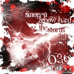 SINOGEN/HOW HARD - The Storm (Front Cover)