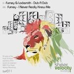 FURNEY/LOCKSMITH - Dub A Dub (Front Cover)