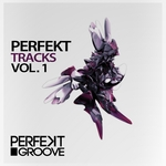 VARIOUS - Perfekt Tracks Volume 1 (Front Cover)
