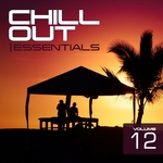 Chill Out Essentials Vol 12
