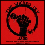 The Wicked Try (remixes)