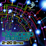 EXTENDED MEMORY - 2-20 Bytes (Front Cover)