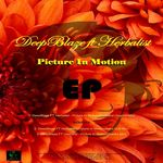 DEEPBLAZE feat HERBALIST - Picture In Motion EP (Front Cover)