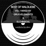VARIOUS - Best Of Waldliebe Familien Vol 1 (Front Cover)