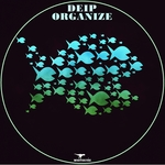 DEIP - Organize (Front Cover)