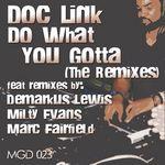 Do What You Gotta: The Remixes