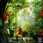 Canto Del Bosque