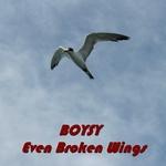 Even Broken Wings