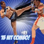 15 Hit Combo Vol 4