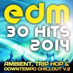 EDM Ambient Trip Hop & Downtempo Chillout Vol 2 (30 Top Hits 2014)