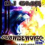 Dubwisewords 2014