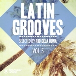Latin Grooves Vol 5