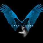 Spiritbird