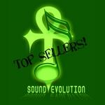 Sound Evolution Collection Vol 2