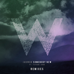 Somebody New (remixes)