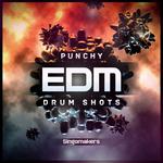 Punchy EDM Drum Shots (Sample Pack WAV)