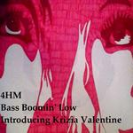 Bass Boomin Low