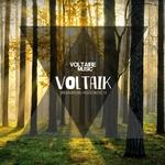 Voltaik Vol 14