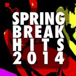 Spring Break Hits 2014