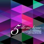 Slo Mo House Vol 5